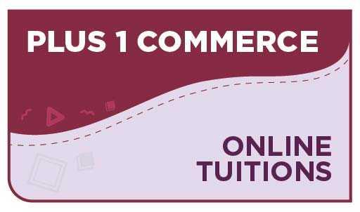 Plus 1 Commerce Online Tuition