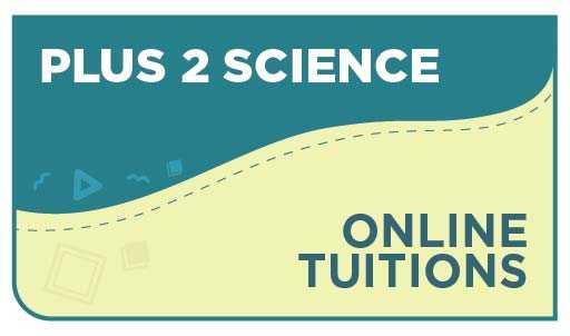 Plus 2 Commerce Online Tuition